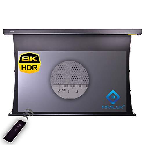 HiViLux Tension Motor Leinwand Dualspann System Hochkontrast Grau Tuch: HiViGrey Cinema 5D MP/HDR Akustics 8K Gain=1,25 Micro Perforated schalldurchlässig (16:9 Bild:221x124cm 100