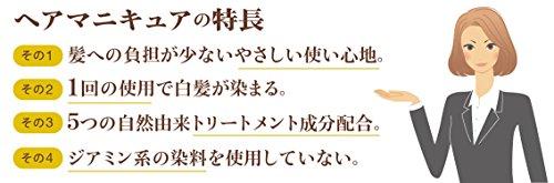 サロンドプロヘアマニキュア・スピーディ6ダークブラウン100g(白髪用)