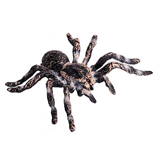FLORMOON Realistic Animal Figures - Spider Action Model Lifelike Insect Toy Figures - Educational Learning Toys Birthday Set for Boys Girls Kids Toddlers (Giant Whiteknee)