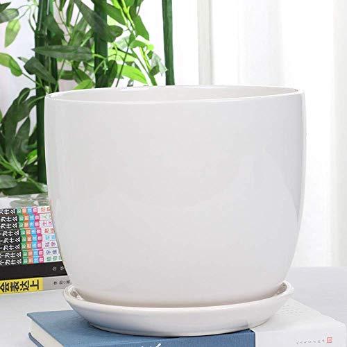 Maceta de cerámica grande, blanca / negra, personalidad simple con bandeja, flor, planta verde, maceta, interior, exterior, para orquídeas, hierbas, flores, cactus suculentos, hogar, oficina, balcón,