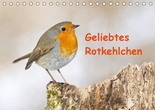 Geliebtes Rotkehlchen (Tischkalender 2021 DIN A5 quer)