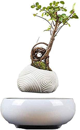 SEESU.U Maglev Bonsai Air Bonsai - Adornos de Resina para el hogar y la Oficina, decoración de Escritorio, Seguridad y protección del Medio Ambiente