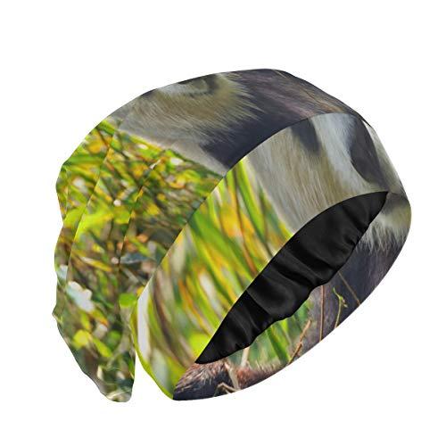Gorro de tela para dormir Panda gigante come hojas de bambú Gorro para el cabello para dormir Gorro de noche duradero y suave para el exterior para cabello largo natural rizado disponible día y noche