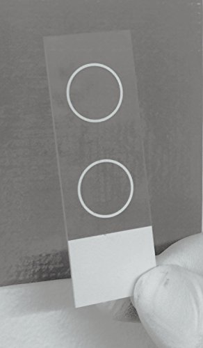 Two-Circle Microscope Slides for Fluorescent Microscopy (1 box of 72 pcs)