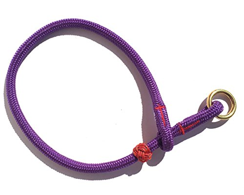 DOGS and MORE - Hochwertiges MeRuBu Seil-Halsband mit Messingring in Rot, Marine, Grün, Schwarz, Orange, Blau oder Lila (8 mm) (42 cm Halsumfang, Lila)