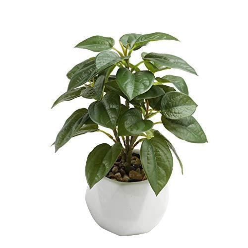 Keleer Plantas artificiales en maceta de aspecto real con hoja de violín de imitación en maceta de porcelana blanca para decoración del hogar y escritorio de oficina (hoja de violín verde)