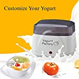 Readygogo Yogurt Maker Machine | BPA-Free Storage Container & Lid | Perfect for Organic, Sweetened, Flavored, Plain or Sugar Free Options for Baby, Kids, Parfaits
