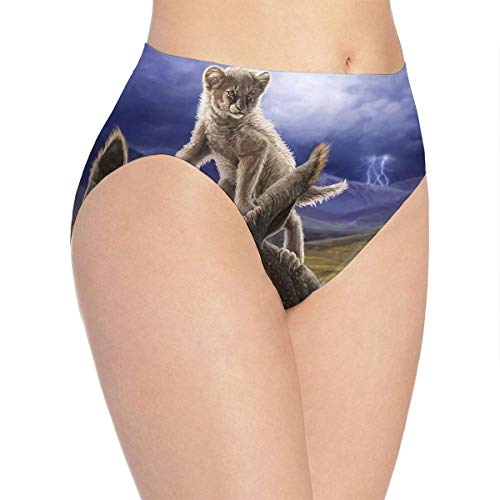 XCNGG Bragas Ropa Interior de Mujer 3D Print Soft Women's Underwear, Lion Ratha Lightning Day Fashion Flirty Lady'S Panties Briefs
