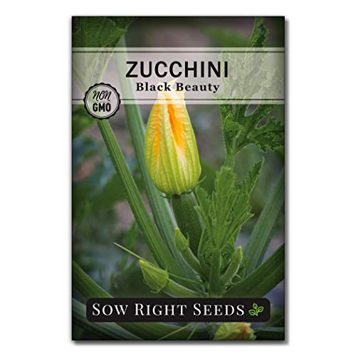 Sow Right Seeds - Black Beauty Zucchini Seed for Planting - Non-GMO Heirloom Packet with Instructions to Plant a Home Vegetable Garden - Great Gardening Gift (1)
