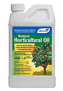 Monterey LG 6299 Horticultural Oil Concentrate Insecticide/Pesticide Treatment for Control of Insects 32 oz