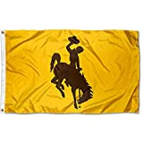 College Flags & Banners Co. Wyoming Cowboys Gold Flag