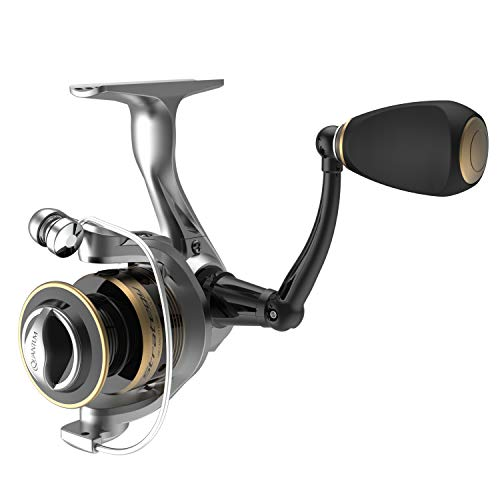 Top 10 Best 6 Ball Bearings Spinning Fishing Reels Comparison