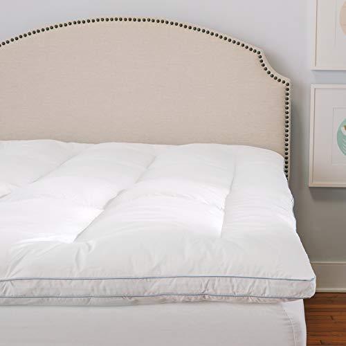 Soft-Tex Restonic - Protector de colchón Individual, Color Bl