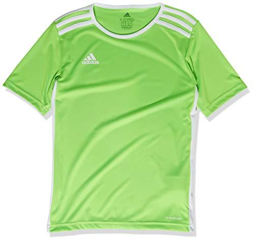 adidas Entrada 18 Jersey de Manga Corta para Hombre, Camiseta Entrada 18, Hombre, Color Verde Solar/Blanco, tamaño Small