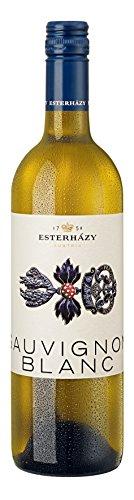 6x 0,75l - 2016er - Esterházy - Estoras - Sauvignon Blanc - Burgenland - Österreich - Weißwein trocken