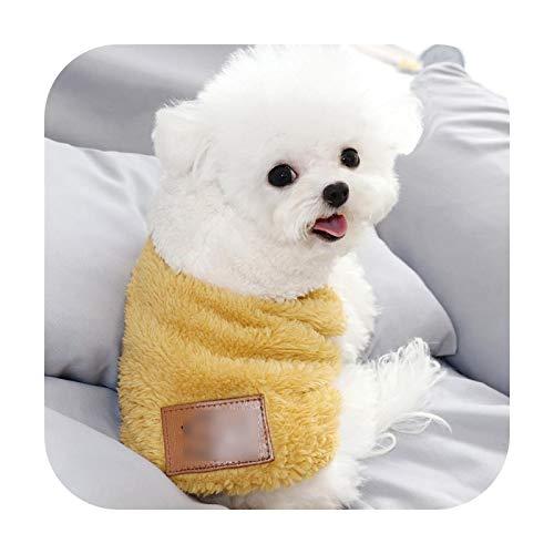 Abrigo con capucha para perro, para otoo o invierno, clido, Chihuahua, bonito chaleco para perros pequeos y medianos