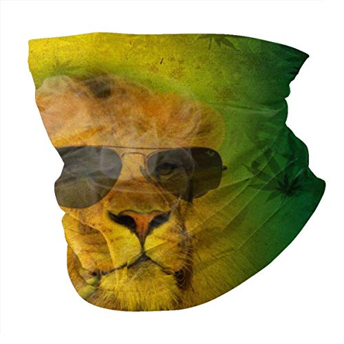 LAKILAN Cool Rasta Lion Judas con Gafas De Sol Lion Cubierta Facial,Pañuelo Deportivo,Sombreros Sin Costuras,Banda Elástica Ultra Suave,Diademas para Exteriores
