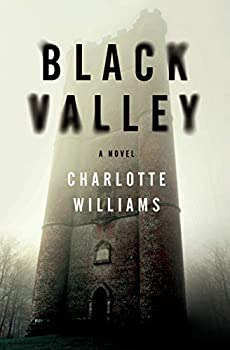 Black Valley - Book #2 of the Jessica Mayhew