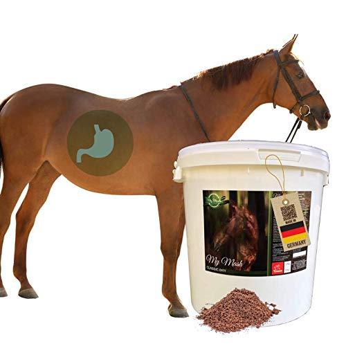 EMMA Mash Horse Feed Mezcla para la Flora intestinal intacta y la digestión Estable I Mezcla Seca I apoya la digestión, la vitalidad y el Pelo Brillante en los Caballos I Senior 2 kg