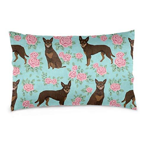 Fundas de cojín de terciopelo rectangulares, fundas de almohada decorativas suaves para sofá, dormitorio, coche, 40,6 x 60,9 cm (perro Kelpie australiano rojo y marrón Kelpie diseño rosas azul claro)