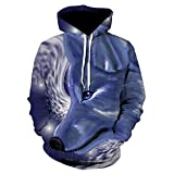 Men S Autumn and Winter Models 3D Printing Hoodie Autumn Men and Women Cool Wolf Fashion Casual Hoodie-We303_4XL