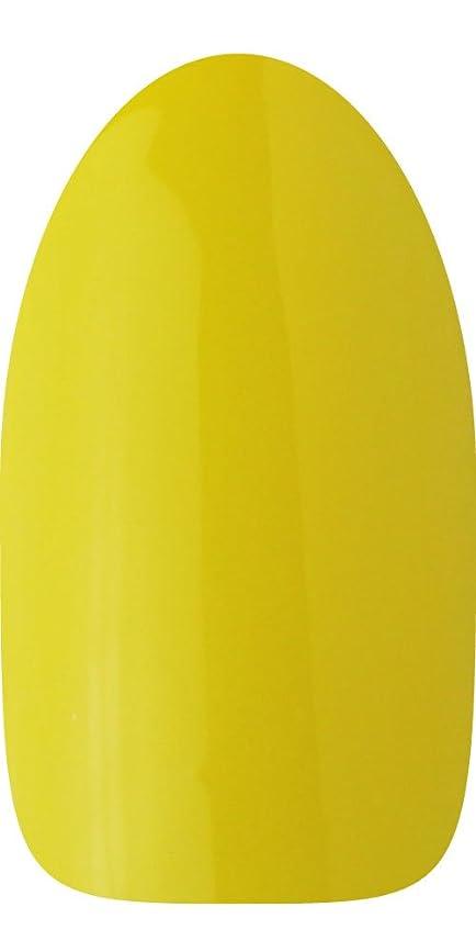 写真を描く吸収剤ルートsacra カラージェル No.171 レモン畑