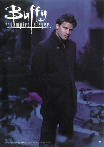 Buffy The Vampire Slayer - TV Show Poster/Print (Angel/David Boreanaz) (Size: 27 inches x 39 inches)