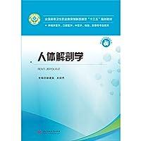 人体解剖学 郭建美 王效杰 华中科技大学出版社 9787568041461