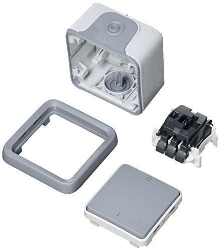 Legrand 790069980–Interruptor bipolar IP55–Color gris