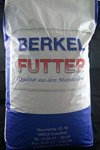 Berkel Chinchilla-Gold-KR 25kg