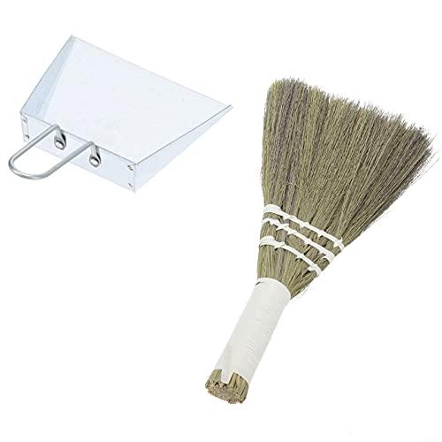 cabilock 2 Piezas Pequeño Recogedor de Basura con Juego de Cepillos de Limpieza de Escritorio Cepillo Mini Cepillo de Limpieza de Vidrio para Mesa de Limpieza Teclado para Mascotas Pelo
