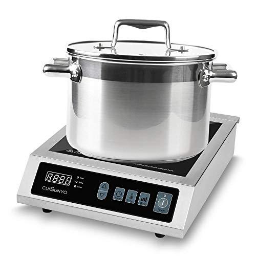 3500w induction burner - 3