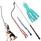 EXPAWLORER Pet Retractable Pole Toy - Dog Flirt Pole Teaser Wand with 2 Rope Chew Toys and 1 Plush Refill