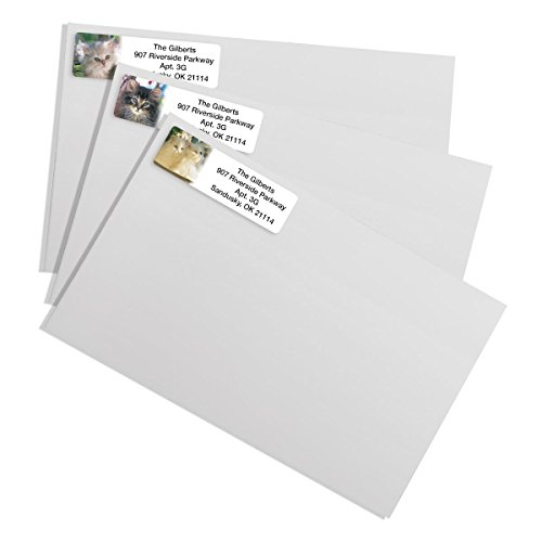 Photo Kitties Designer Assorted Rolled Address Labels with Elegant Plastic Dispenser Photo #3
