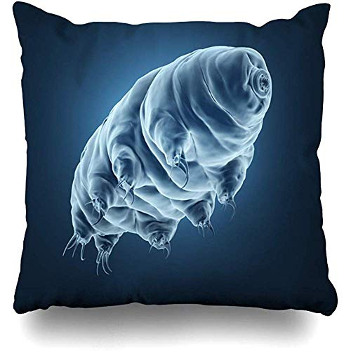 Throw Pillow Cover Microorganism Bear Rendered Realistic Tardigrade Science Microscope Biology Eight Legged Home Decor Pillowcase Square Size 18'x18' Decorative Pillow Case