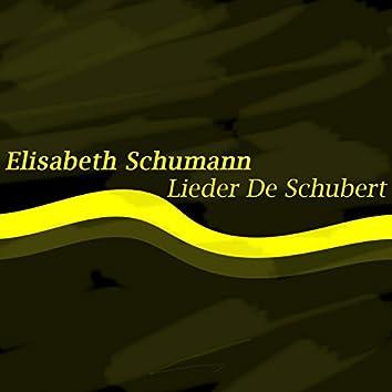 Schubert: Lieder de Schubert