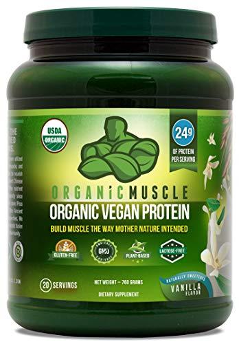 USDA Organic Vegan Protein Powder by Organic Muscle review