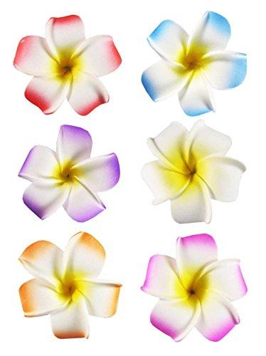 """HipGirl 6pc 2.5"""" Hawaii Hawaiian Flower Clips for Hair Dress. Flower Hair Clips For Women, Match Beach Dress and Hawaiian Dresses for Women (6pc Plumeria Hair Flowers for Women)"""