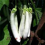 Semi di ortaggi vendita! 100 bianco lungo melanzana semi-Facile da coltivare-Green