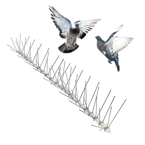 Bird-X STS-50 Regular Width 6-inch Stainless Steel Bird Spikes, Metal Roof Guard Pigeon Prevention, Rodent Deterrent, Animal and Pest Control Supplies, 50 feet