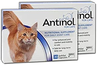 Antinol Merial Joint Health Supplement for Cats Soft Gel Caps, (2 Pack (30 Count))