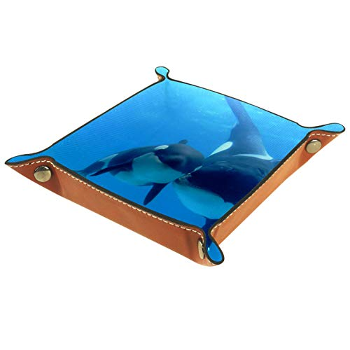 LynnsGraceland Bandeja de Cuero - Organizador - Orca - Práctica Caja de...