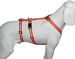 Suchergebnis Auf Für Sicherheitsgeschirre Für Hunde Orange Sicherheitsgeschirre Geschirre Haustier