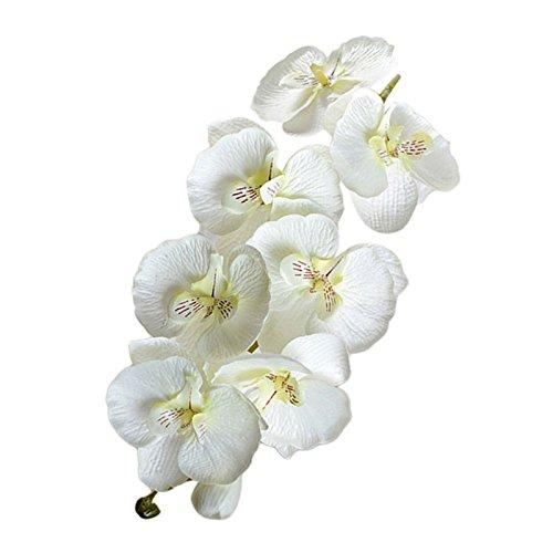 LAMF 6 tallos artificiales de orquídea con 8 cabezas de tacto real, orquídeas de látex, orquídeas para decoración del hogar, centros de mesa de boda, flores artificiales decorativas de Phalaenopsis