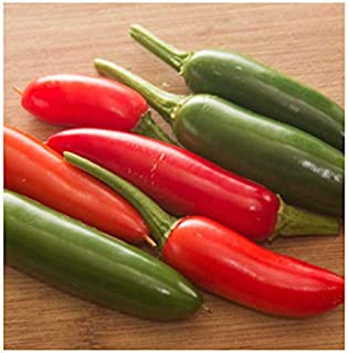 Serrano Hot Pepper Seeds, 100+ Premium Heirloom Seeds, 90% Germination Rates, Produces fiery hot pepper plants! - Capsicum annuum - (Isla's Garden Seeds) - Non Gmo Organic, Highest Quality