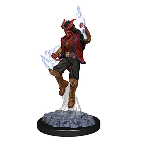 Nolzur's Marvelous Miniatures D&D Tiefling Male Sorcerer WZK90058