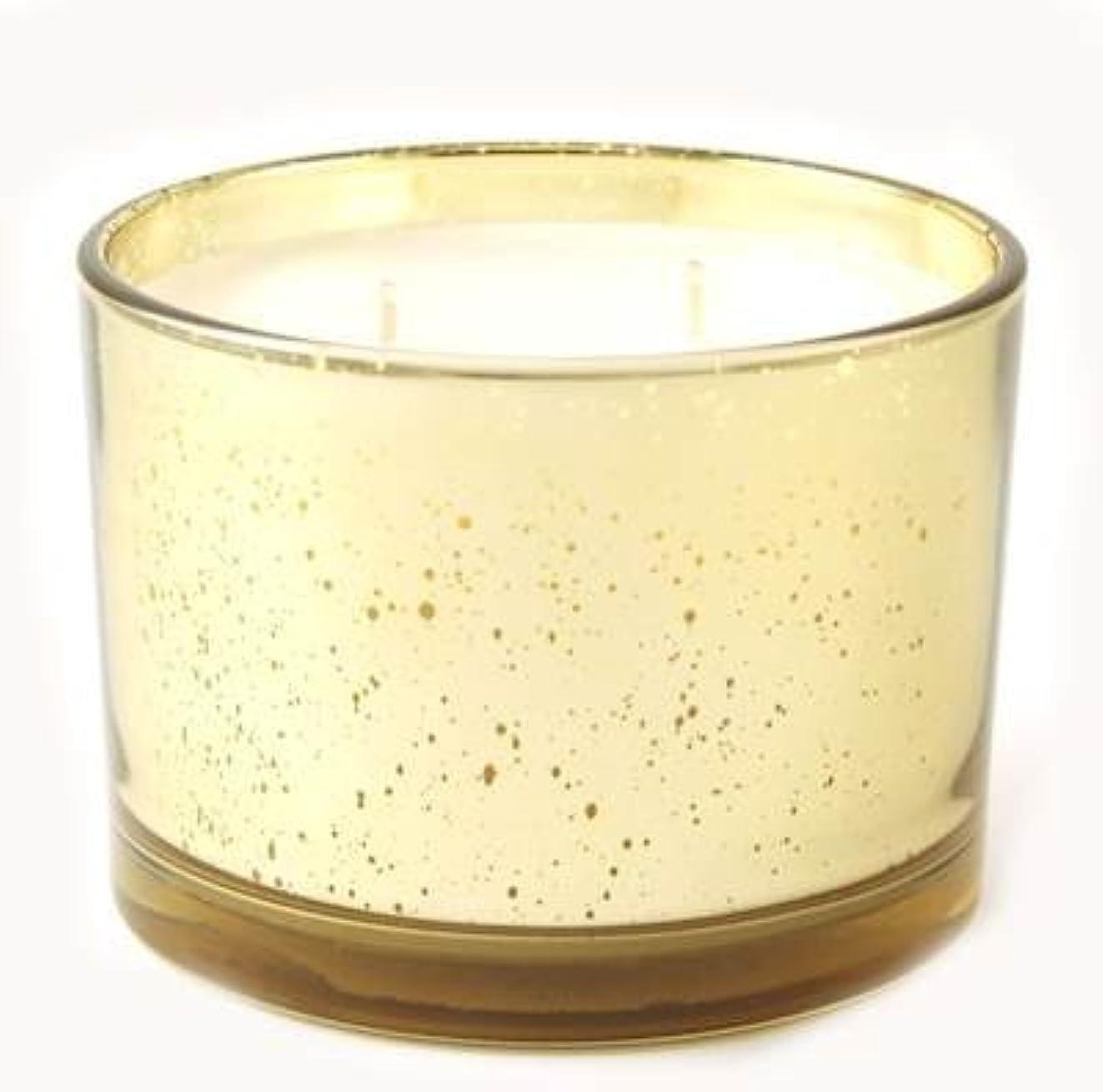 びん勧めるマイコンアップルサイダーTyler Statureゴールドonゴールド16oz香りつきJar Candle