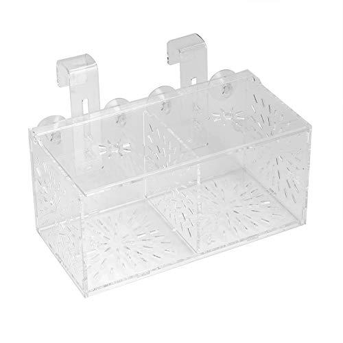 Hffheer Aquarium Zucht Isolation Box Aquarium Akklimatisation Brut Inkubator Acryl Transparent Aquarium Brut Inkubator Halter(20CM*10CM*10CM)
