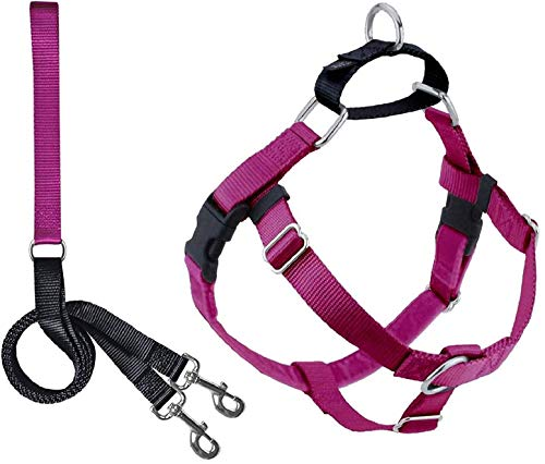 Double Leash Harness