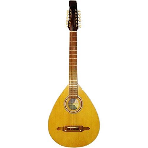 New Acoustic 12 Twelve String Lute Folk Guitar Kobza. Vihuela. Ukraine, Trembita 208